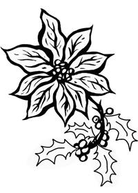 La Leggenda Della Stella Di Natale Scuola Primaria.La Leggenda Della Stella Di Natale Storie Con Morale Maestro Dei